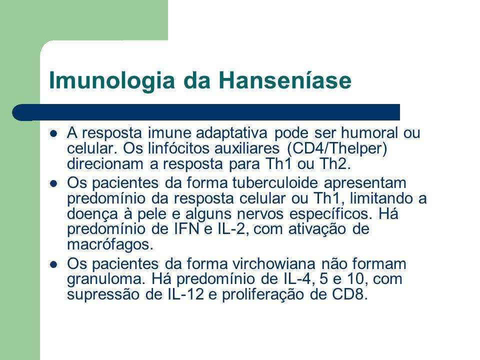 Imunologia da Hanseníase A resposta imune adaptativa pode ser humoral ou celular. Os linfócitos auxiliares (CD4/Thelper) direcionam a resposta para Th