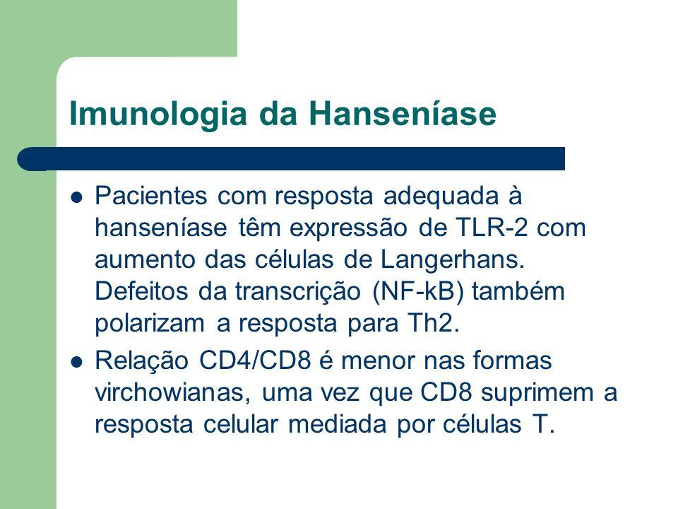 Imunologia da Hanseníase Pacientes com resposta adequada à hanseníase têm expressão de TLR-2 com aumento das células de Langerhans. Defeitos da transc