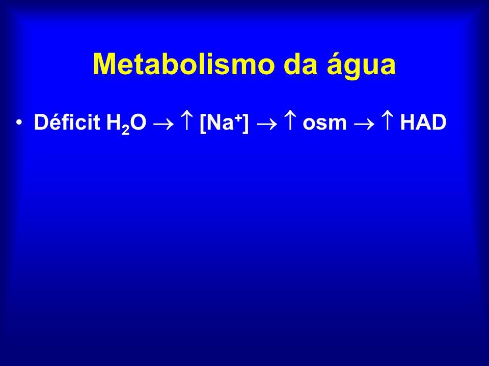 Geração e excreção renal de água livre 285 400 800 1200 600 200 100 90 80 70 50 TFG Hipovolemia Tiazídico Hipovolemia ADH ICC, cirrose Dor, náuseas TSH, cortisol SIHAD