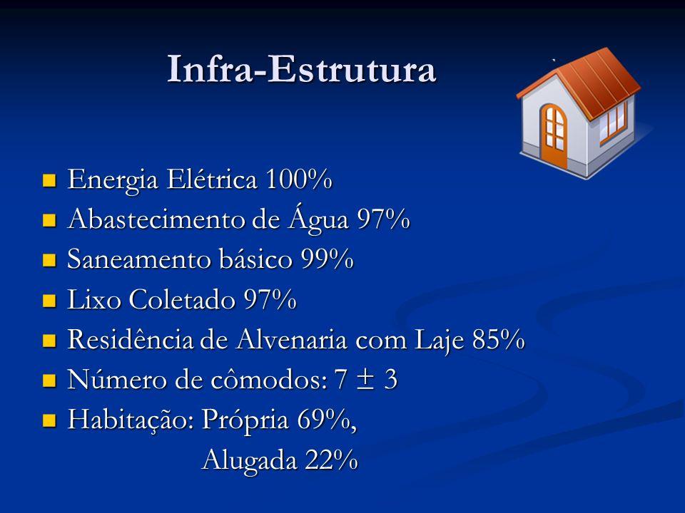 Infra-Estrutura Energia Elétrica 100% Energia Elétrica 100% Abastecimento de Água 97% Abastecimento de Água 97% Saneamento básico 99% Saneamento básic