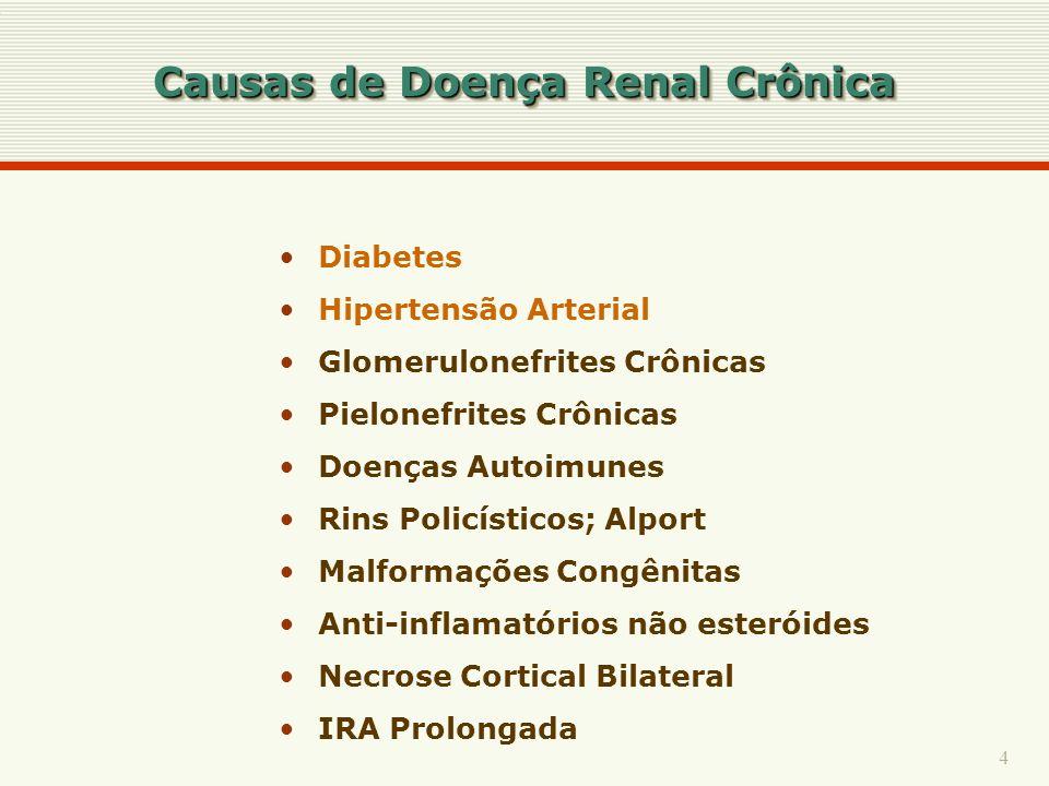 4 Causas de Doença Renal Crônica Diabetes Hipertensão Arterial Glomerulonefrites Crônicas Pielonefrites Crônicas Doenças Autoimunes Rins Policísticos;
