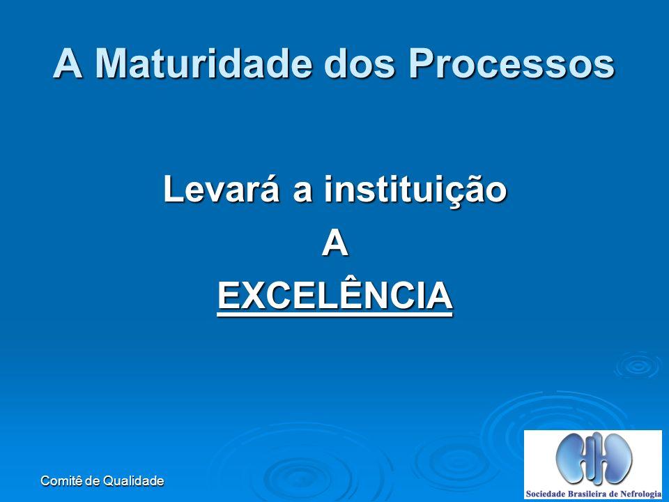 Comitê de Qualidade A Maturidade dos Processos Levará a instituição AEXCELÊNCIA