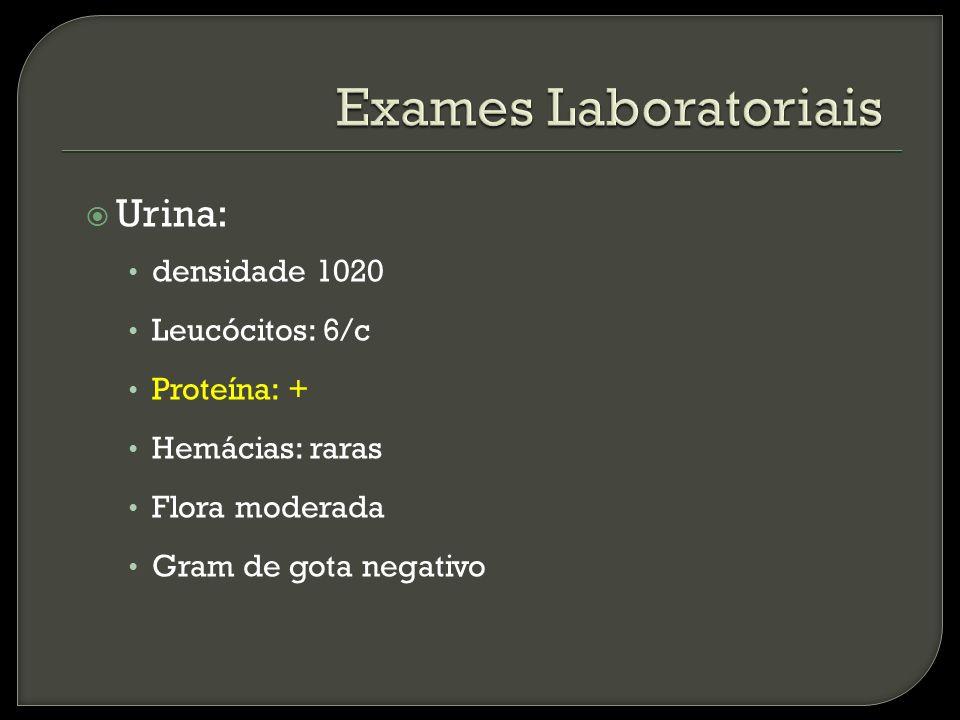 Urina: densidade 1020 Leucócitos: 6/c Proteína: + Hemácias: raras Flora moderada Gram de gota negativo