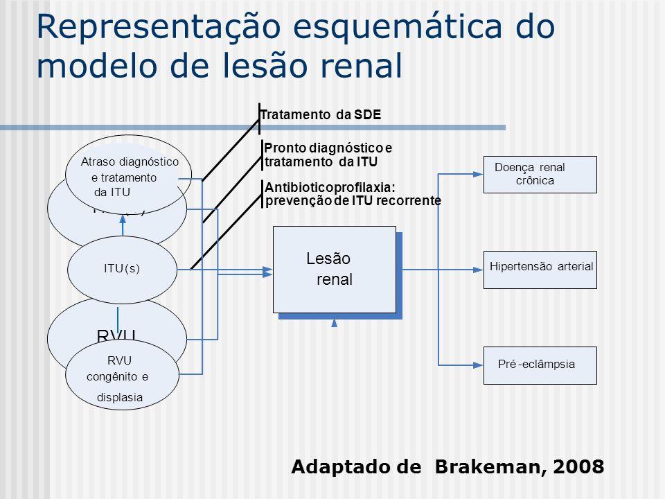 Representação esquemática do modelo de lesão renal Lesão renal Doença renal crônica Pré-eclâmpsia Hipertensão arterial Pronto diagnóstico e tratamento