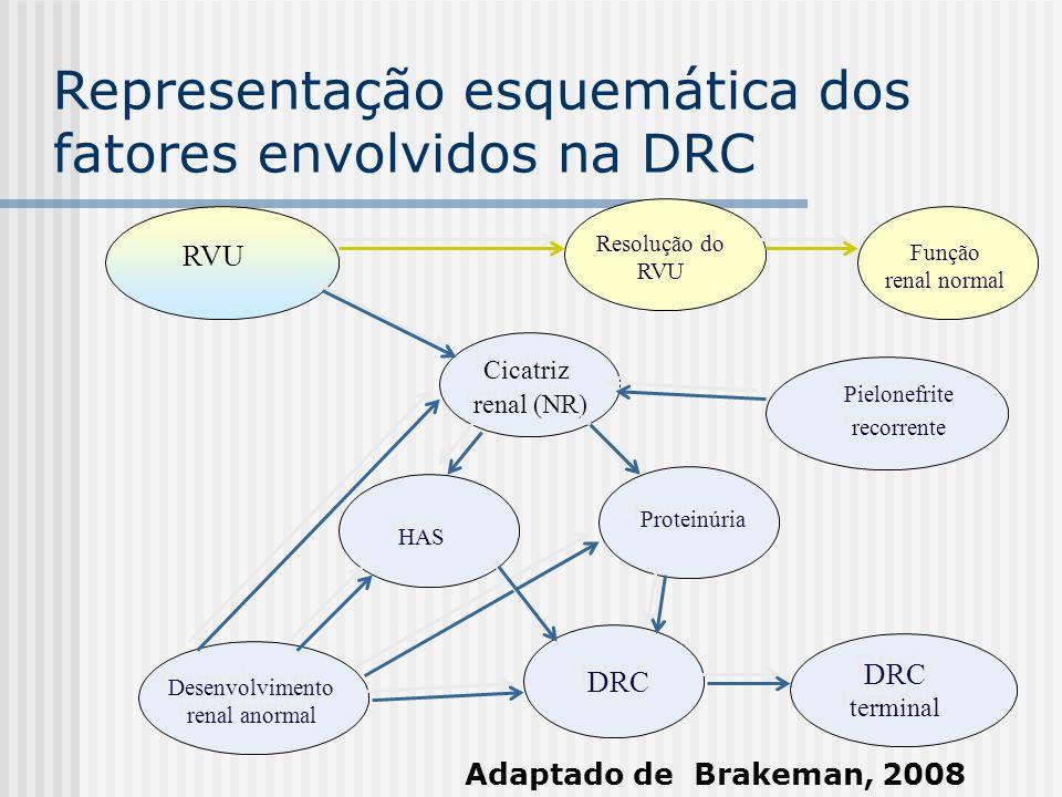Representação esquemática dos fatores envolvidos na DRC RVU Cicatriz renal (NR) HAS Proteinúria Desenvolvimento renal anormal DRC DRC terminal Pielone