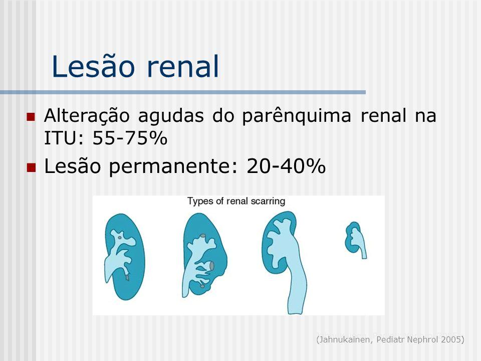 Lesão renal Alteração agudas do parênquima renal na ITU: 55-75% Lesão permanente: 20-40% (Jahnukainen, Pediatr Nephrol 2005)