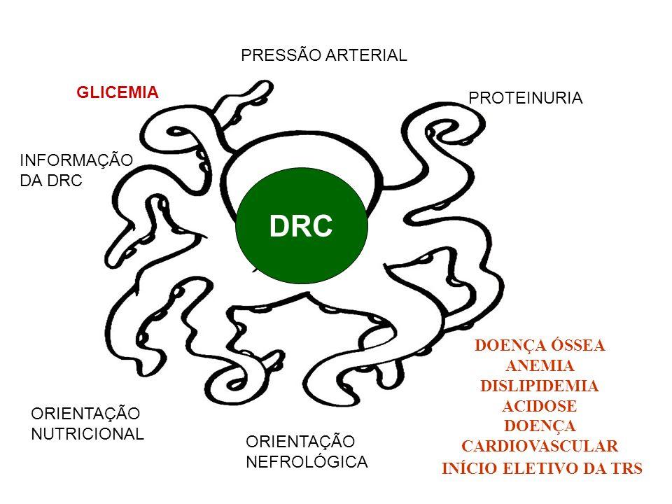 PRESSÃO ARTERIAL PROTEINURIA GLICEMIA INFORMAÇÃO DA DRC ORIENTAÇÃO NUTRICIONAL DOENÇA ÓSSEA ANEMIA DISLIPIDEMIA ACIDOSE DOENÇA CARDIOVASCULAR INÍCIO E
