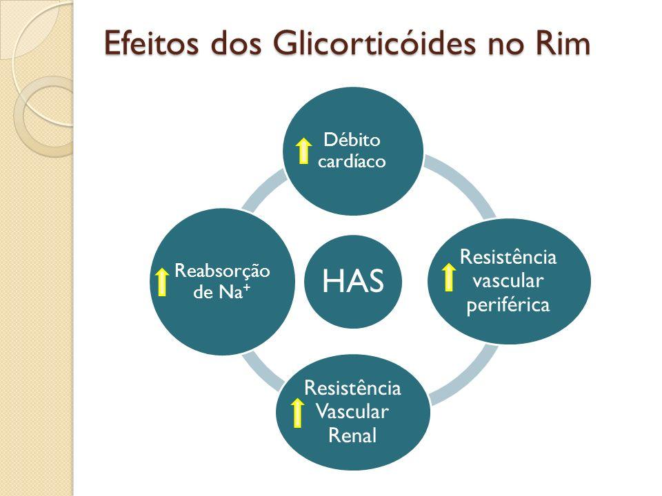 Efeitos dos Glicorticóides no Rim HAS Débito cardíaco Resistência vascular periférica Resistência Vascular Renal Reabsorção de Na +