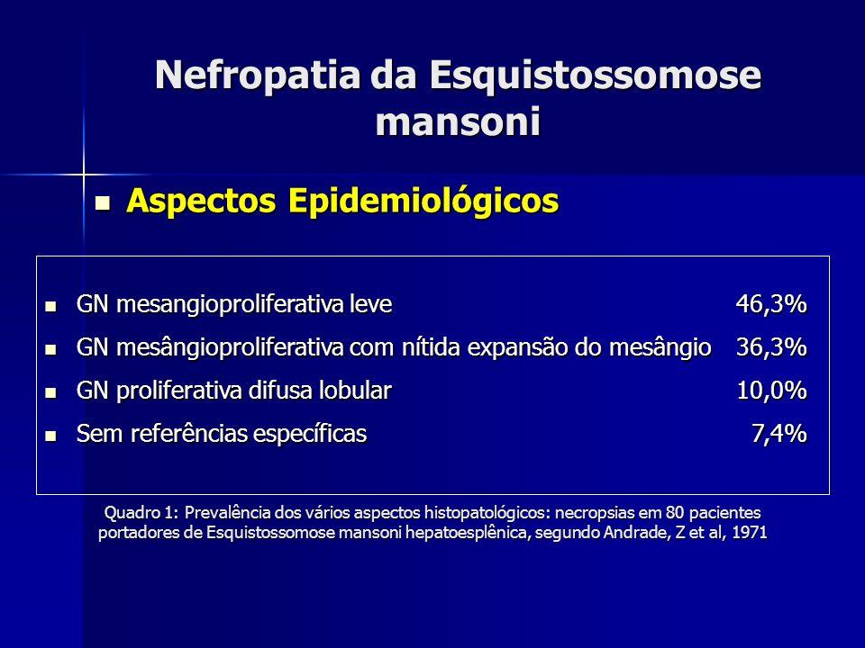 Nefropatia da Esquistossomose mansoni Aspectos Epidemiológicos Aspectos Epidemiológicos Quadro 1: Prevalência dos vários aspectos histopatológicos: ne