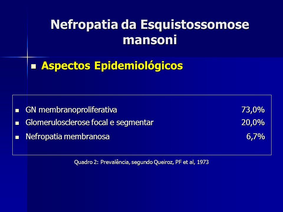 Nefropatia da Esquistossomose mansoni Aspectos Epidemiológicos Aspectos Epidemiológicos GN membranoproliferativa73,0% GN membranoproliferativa73,0% Gl