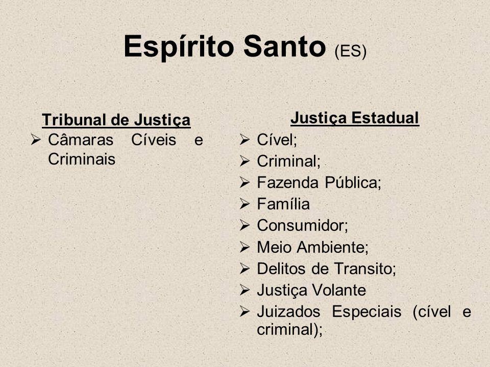 Espírito Santo (ES) Tribunal de Justiça Câmaras Cíveis e Criminais Justiça Estadual Cível; Criminal; Fazenda Pública; Família Consumidor; Meio Ambient