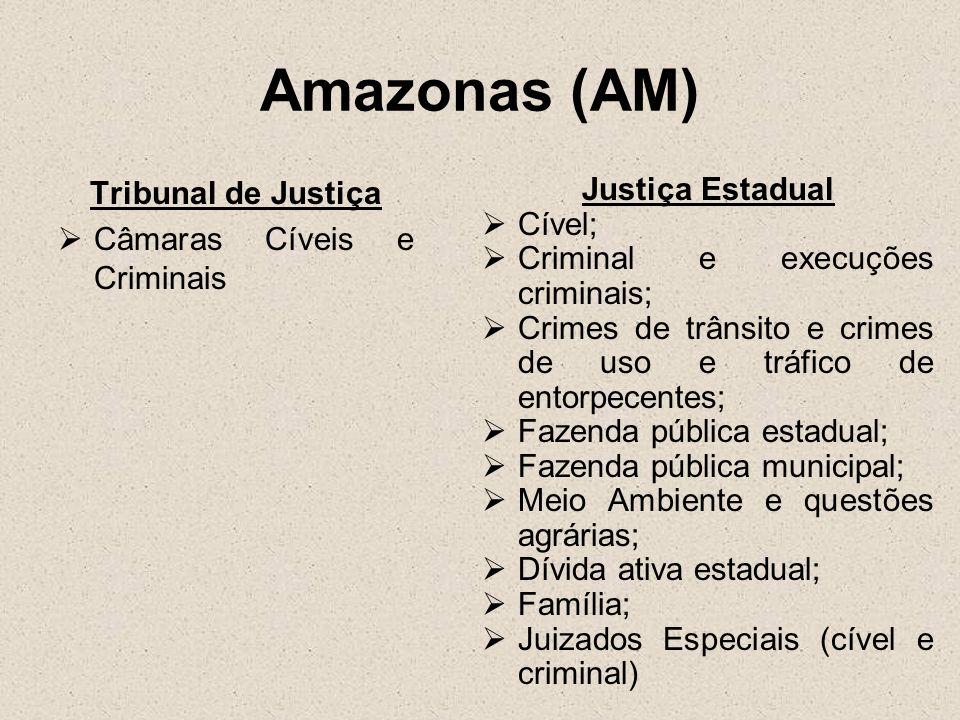 Amazonas (AM) Tribunal de Justiça Câmaras Cíveis e Criminais Justiça Estadual Cível; Criminal e execuções criminais; Crimes de trânsito e crimes de us