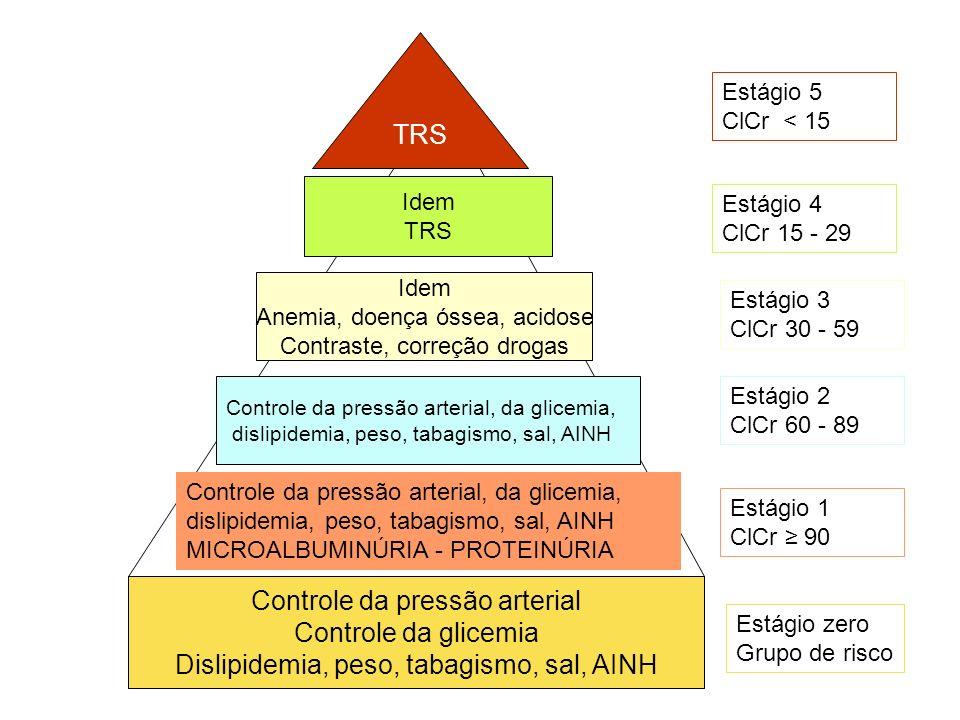Controle da pressão arterial Controle da glicemia Dislipidemia, peso, tabagismo, sal, AINH Estágio zero Grupo de risco Controle da pressão arterial, d