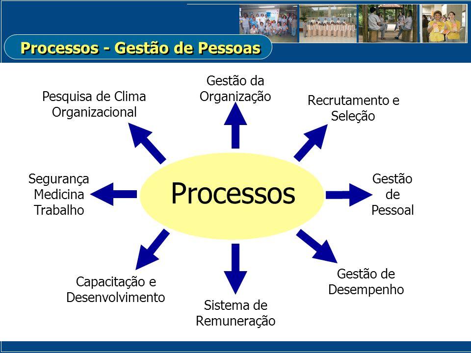 Gestão da Organização Processos Recrutamento e Seleção Gestão de Pessoal Capacitação e Desenvolvimento Sistema de Remuneração Gestão de Desempenho Pes