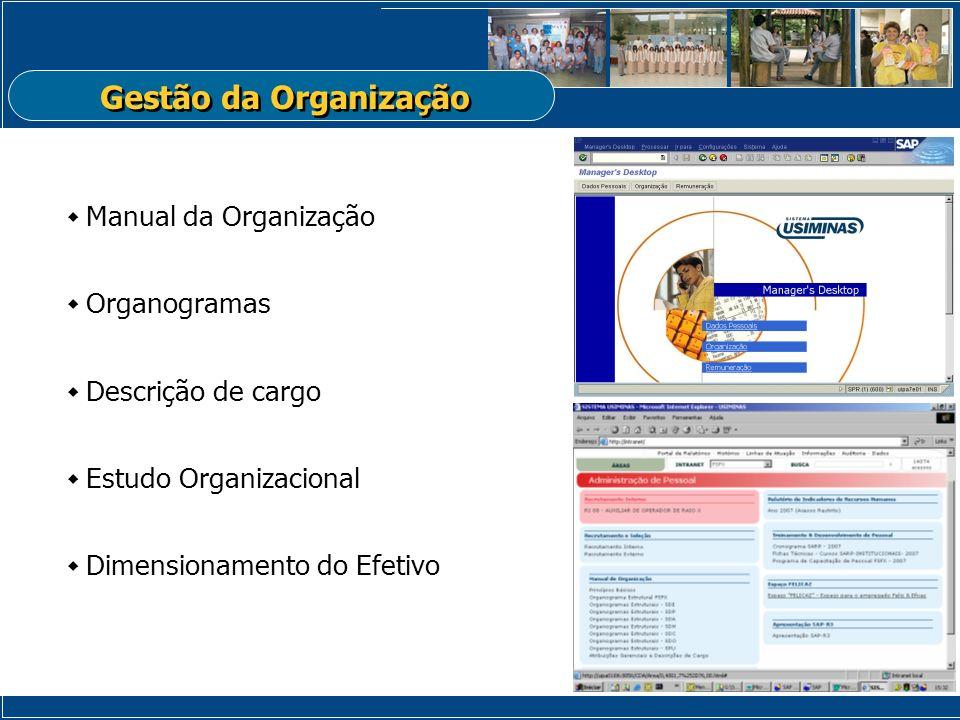 Gestão da Organização Manual da Organização Organogramas Descrição de cargo Estudo Organizacional Dimensionamento do Efetivo