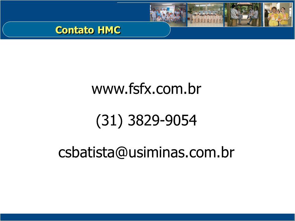 www.fsfx.com.br (31) 3829-9054 csbatista@usiminas.com.br Contato HMC