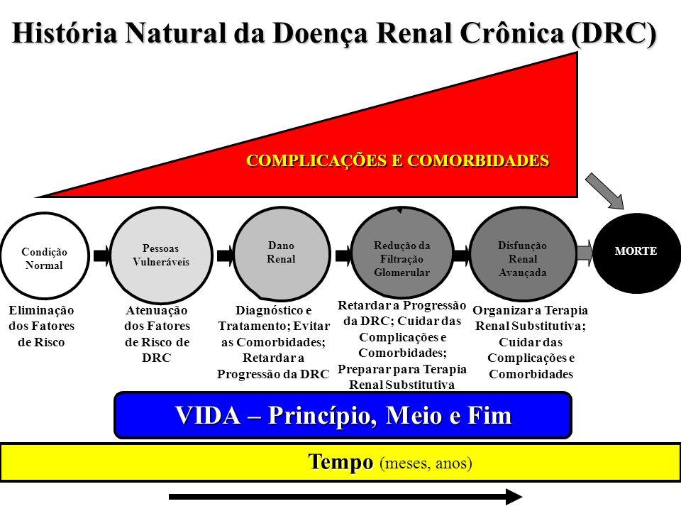 História Natural da Doença Renal Crônica (DRC) Tempo VIDA – Princípio, Meio e Fim (meses, anos) Condição Normal Pessoas Vulneráveis Dano Renal Redução