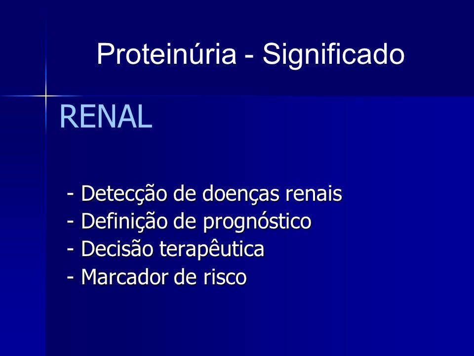 RENAL - Detecção de doenças renais - Detecção de doenças renais - Definição de prognóstico - Definição de prognóstico - Decisão terapêutica - Decisão