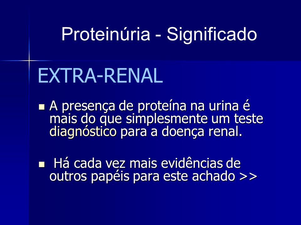 A presença de proteína na urina é mais do que simplesmente um teste diagnóstico para a doença renal. A presença de proteína na urina é mais do que sim