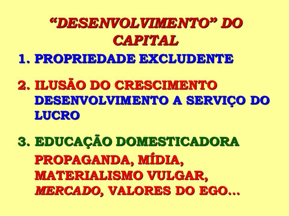 DESENVOLVIMENTO DO CAPITAL 1.PROPRIEDADE EXCLUDENTE 2. ILUSÃO DO CRESCIMENTO DESENVOLVIMENTO A SERVIÇO DO LUCRO 3. EDUCAÇÃO DOMESTICADORA PROPAGANDA,