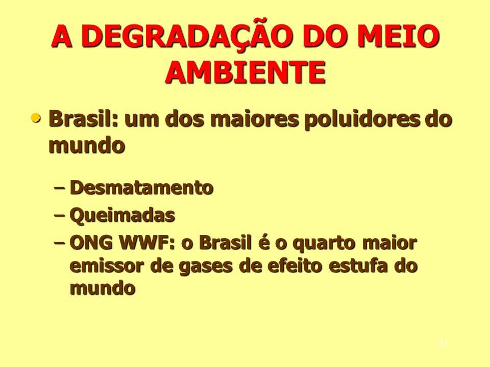 A DEGRADAÇÃO DO MEIO AMBIENTE Brasil: um dos maiores poluidores do mundo Brasil: um dos maiores poluidores do mundo –Desmatamento –Queimadas –ONG WWF: