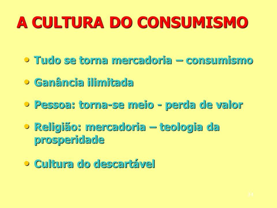 A CULTURA DO CONSUMISMO Tudo se torna mercadoria – consumismo Tudo se torna mercadoria – consumismo Ganância ilimitada Ganância ilimitada Pessoa: torn
