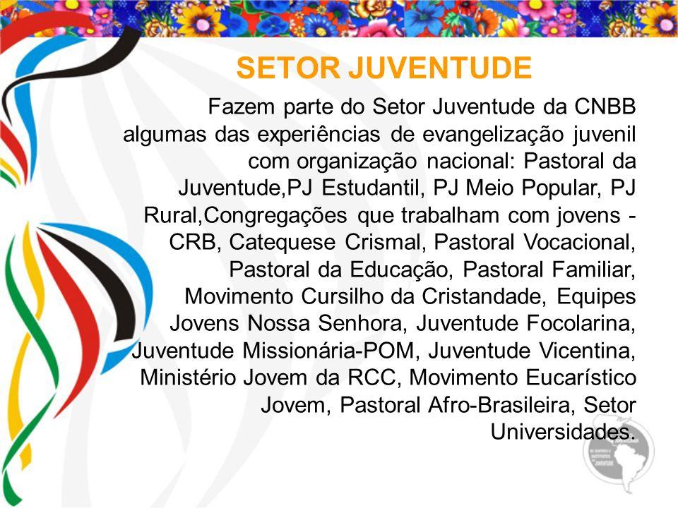SETOR JUVENTUDE Fazem parte do Setor Juventude da CNBB algumas das experiências de evangelização juvenil com organização nacional: Pastoral da Juventu