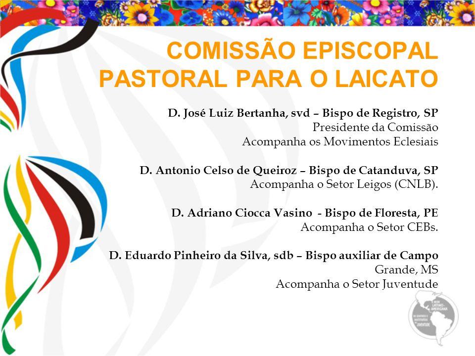 COMISSÃO EPISCOPAL PASTORAL PARA O LAICATO D. José Luiz Bertanha, svd – Bispo de Registro, SP Presidente da Comissão Acompanha os Movimentos Eclesiais