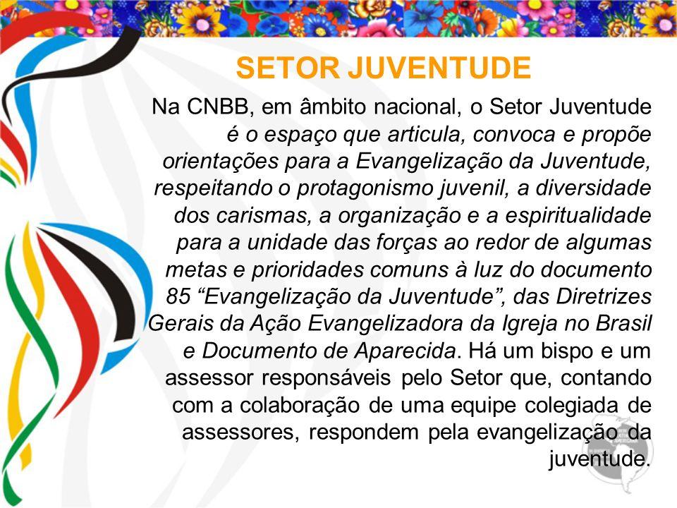 SETOR JUVENTUDE Na CNBB, em âmbito nacional, o Setor Juventude é o espaço que articula, convoca e propõe orientações para a Evangelização da Juventude
