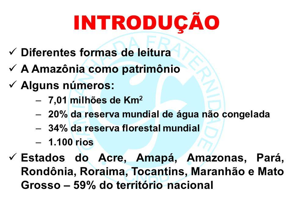 Diferentes formas de leitura A Amazônia como patrimônio Alguns números: –7,01 milhões de Km 2 –20% da reserva mundial de água não congelada –34% da re