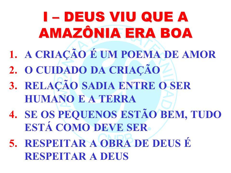 I – DEUS VIU QUE A AMAZÔNIA ERA BOA 1.A CRIAÇÃO É UM POEMA DE AMOR 2.O CUIDADO DA CRIAÇÃO 3.RELAÇÃO SADIA ENTRE O SER HUMANO E A TERRA 4.SE OS PEQUENO