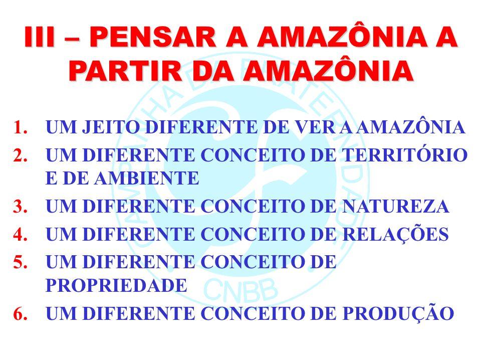 III – PENSAR A AMAZÔNIA A PARTIR DA AMAZÔNIA 1.UM JEITO DIFERENTE DE VER A AMAZÔNIA 2.UM DIFERENTE CONCEITO DE TERRITÓRIO E DE AMBIENTE 3.UM DIFERENTE