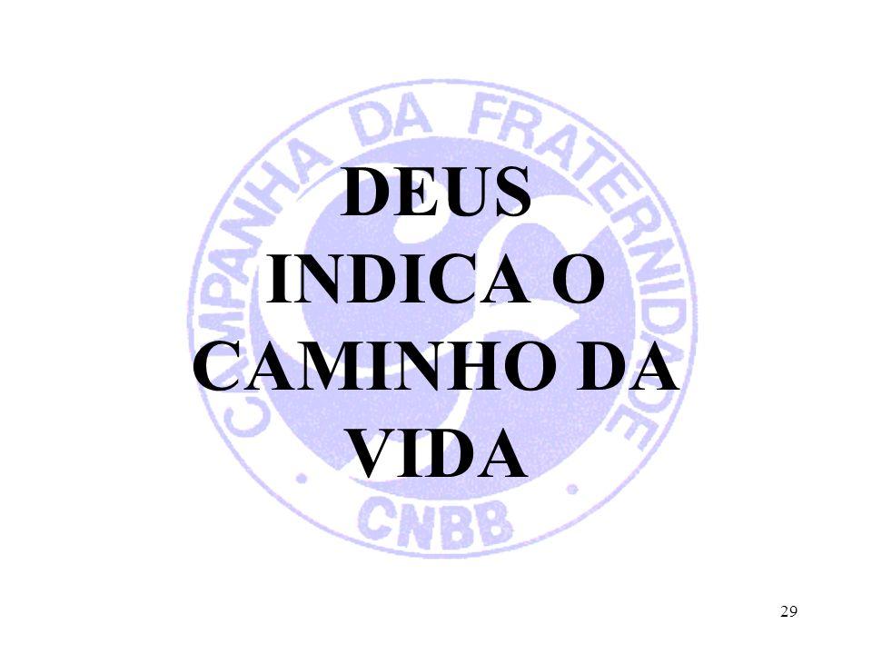 29 DEUS INDICA O CAMINHO DA VIDA