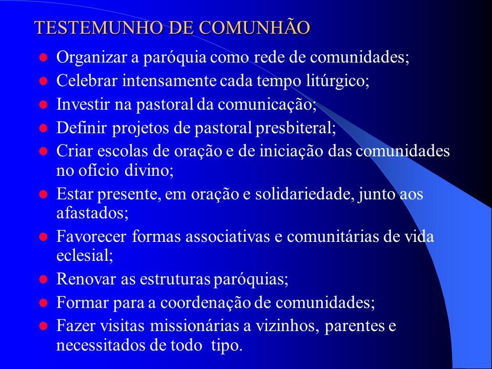 Organizar a paróquia como rede de comunidades; Celebrar intensamente cada tempo litúrgico; Investir na pastoral da comunicação; Definir projetos de pa
