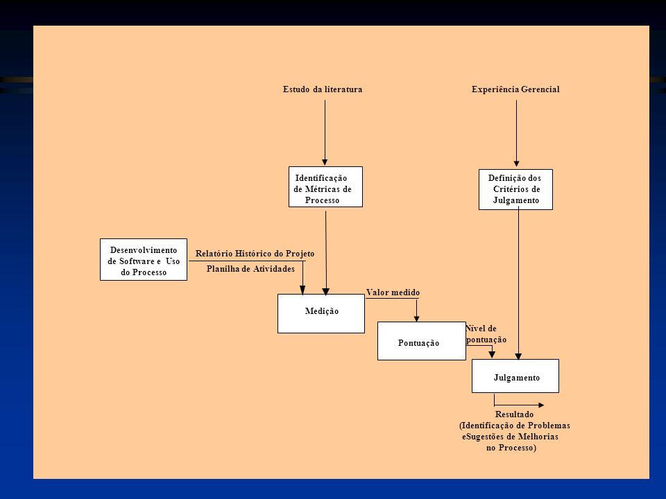 Experiência Gerencial Valor medido Nível de pontuação Resultado (Identificação de Problemas eSugestões de Melhorias no Processo) Estudo da literatura