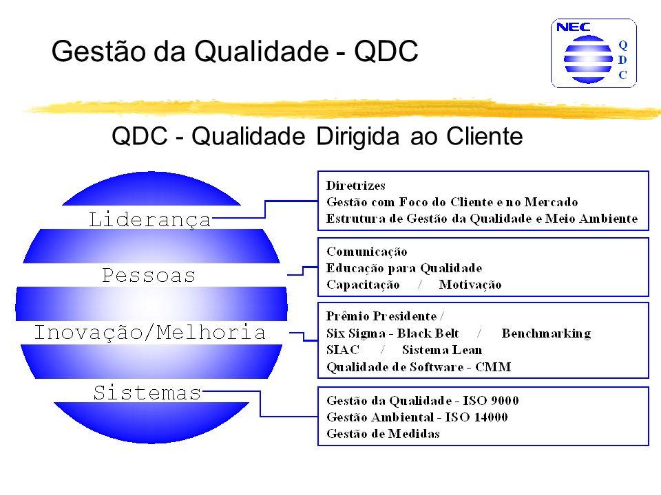 Funções e Atividades Estabelecimento das atividades e responsabilidades para a melhoria do processo de software.