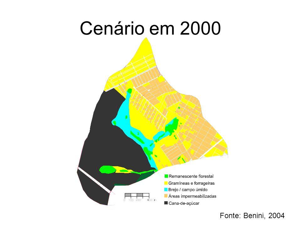 Cenário em 2000 Fonte: Benini, 2004