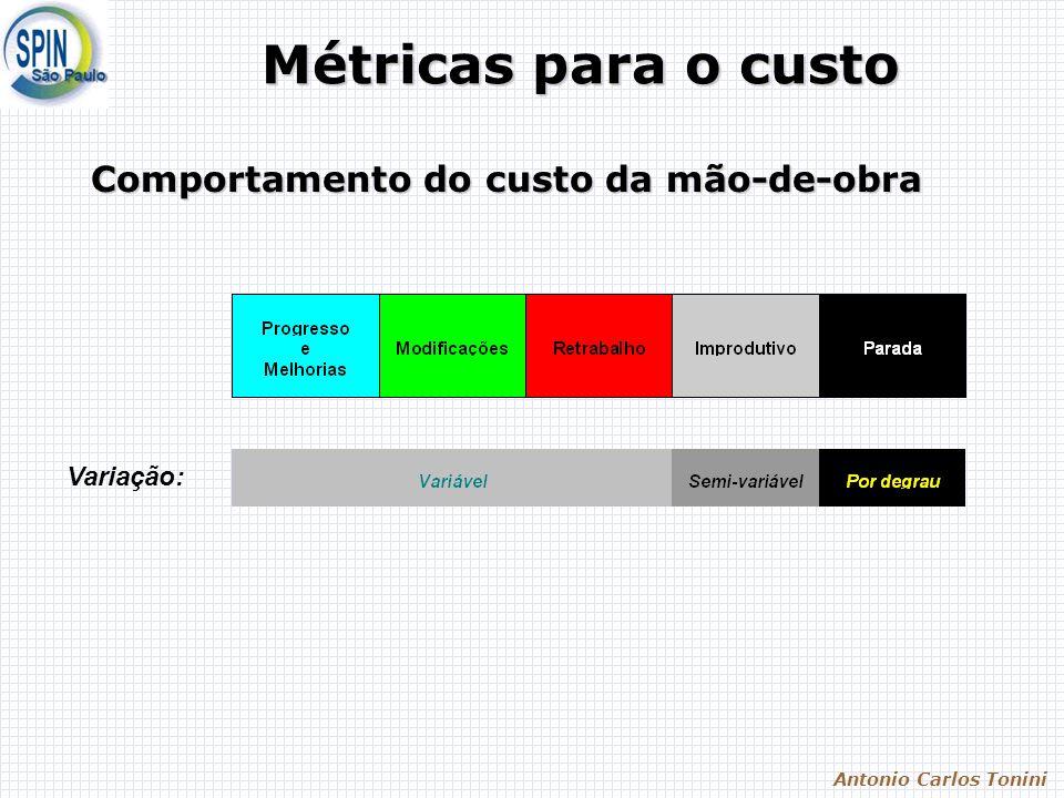 Antonio Carlos Tonini Métricas para o custo Variação: Comportamento do custo da mão-de-obra