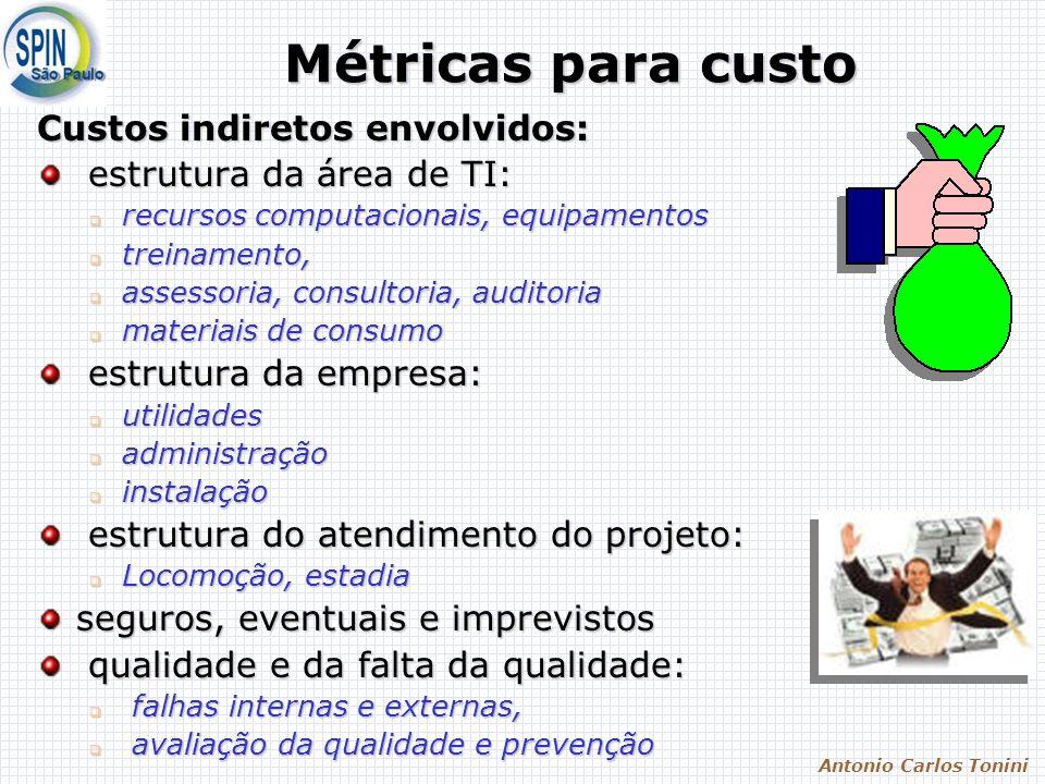 Antonio Carlos Tonini Métricas para custo Custos indiretos envolvidos: estrutura da área de TI: estrutura da área de TI: recursos computacionais, equi