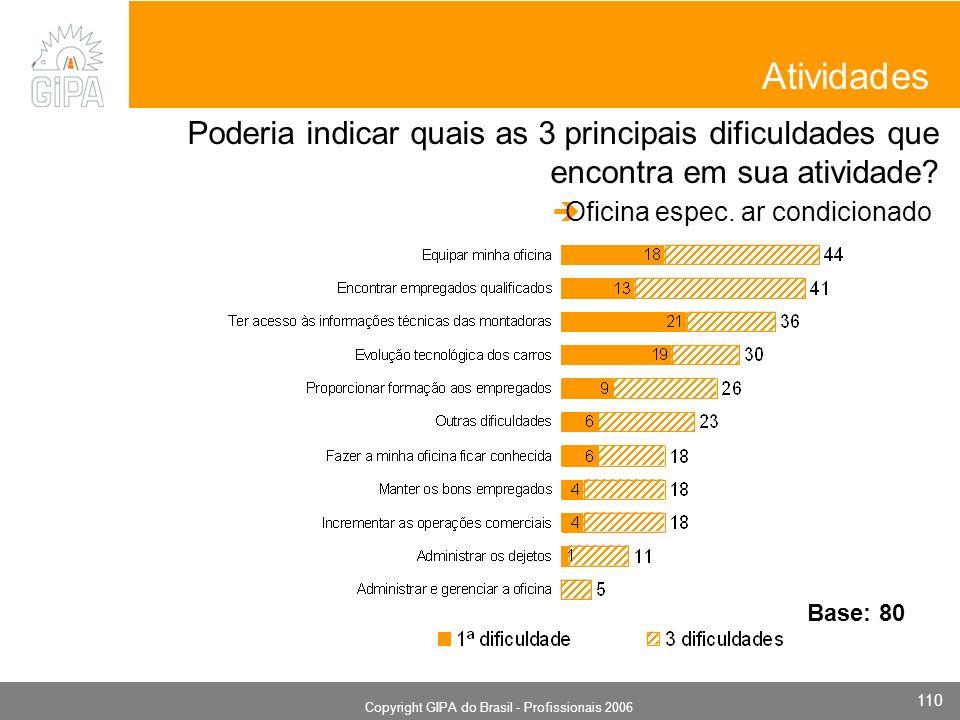 Monografia 2006 Copyright GIPA do Brasil - Profissionais 2006 110 Atividades Poderia indicar quais as 3 principais dificuldades que encontra em sua atividade.