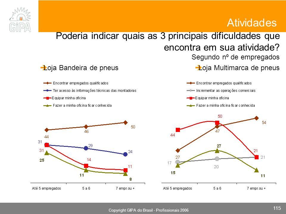 Monografia 2006 Copyright GIPA do Brasil - Profissionais 2006 115 Poderia indicar quais as 3 principais dificuldades que encontra em sua atividade? Se