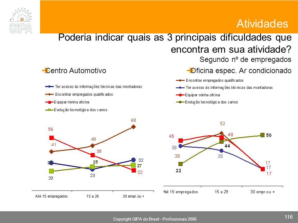 Monografia 2006 Copyright GIPA do Brasil - Profissionais 2006 116 Poderia indicar quais as 3 principais dificuldades que encontra em sua atividade? Se