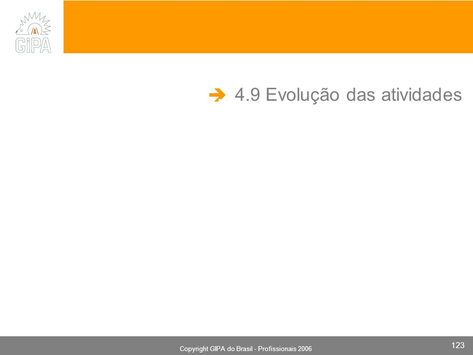 Monografia 2006 Copyright GIPA do Brasil - Profissionais 2006 123 4.9 Evolução das atividades.