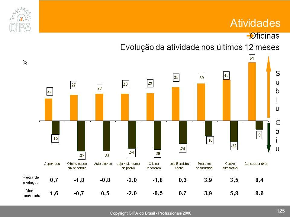 Monografia 2006 Copyright GIPA do Brasil - Profissionais 2006 125 SubiuSubiu CaiuCaiu Atividades Oficinas Evolução da atividade nos últimos 12 meses %
