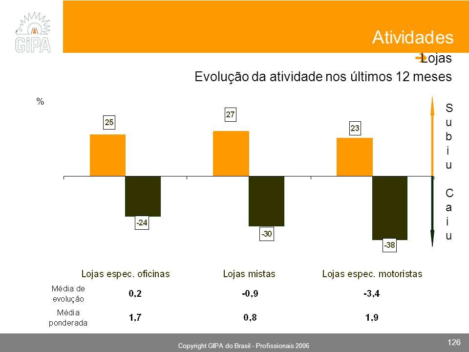 Monografia 2006 Copyright GIPA do Brasil - Profissionais 2006 126 SubiuSubiu CaiuCaiu Atividades Lojas Evolução da atividade nos últimos 12 meses %