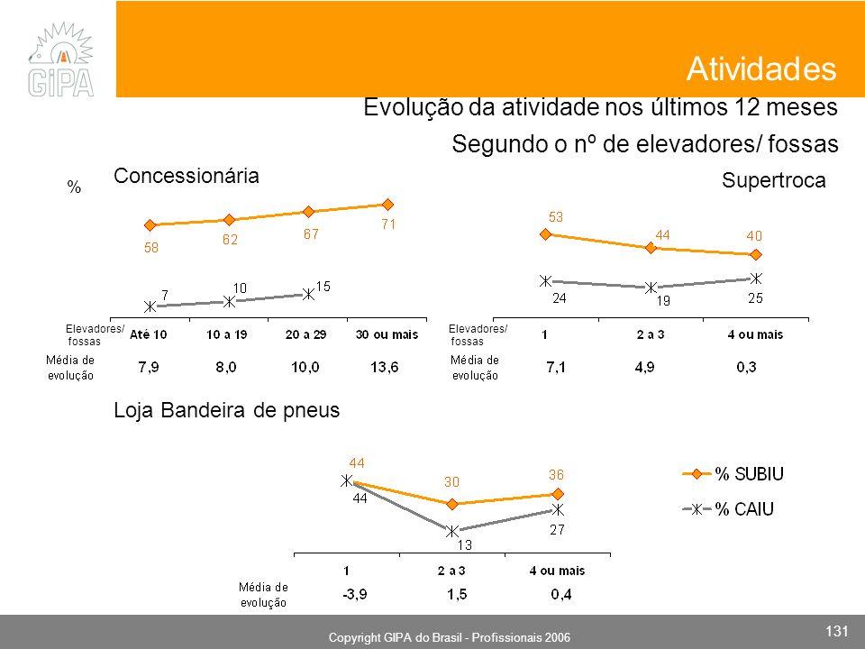 Monografia 2006 Copyright GIPA do Brasil - Profissionais 2006 131 Evolução da atividade nos últimos 12 meses Segundo o nº de elevadores/ fossas Concessionária Atividades Supertroca Loja Bandeira de pneus Elevadores/ fossas Elevadores/ fossas %