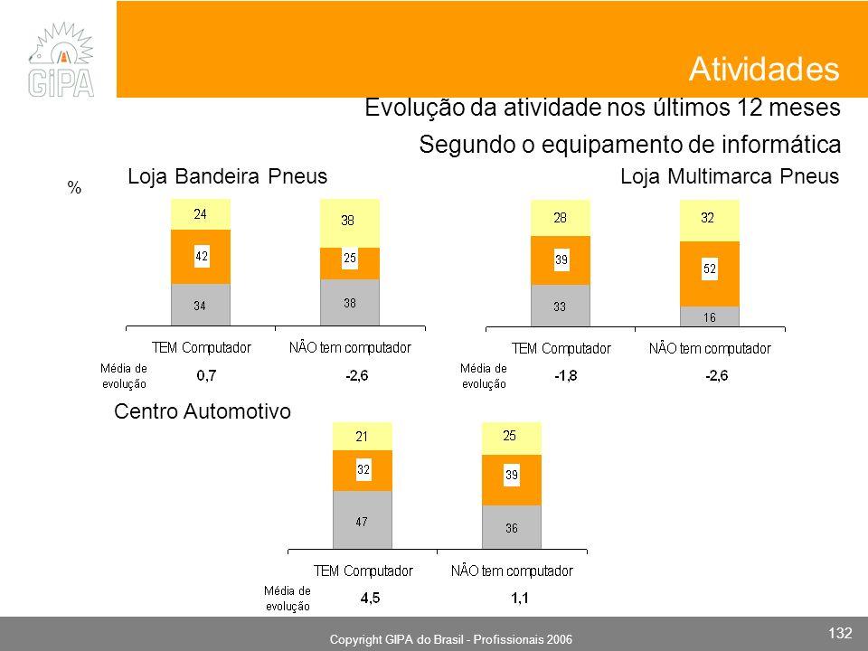 Monografia 2006 Copyright GIPA do Brasil - Profissionais 2006 132 Evolução da atividade nos últimos 12 meses Segundo o equipamento de informática Ativ