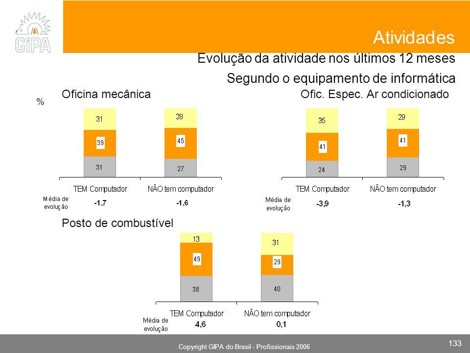 Monografia 2006 Copyright GIPA do Brasil - Profissionais 2006 133 Evolução da atividade nos últimos 12 meses Segundo o equipamento de informática Oficina mecânica Atividades Posto de combustível Ofic.