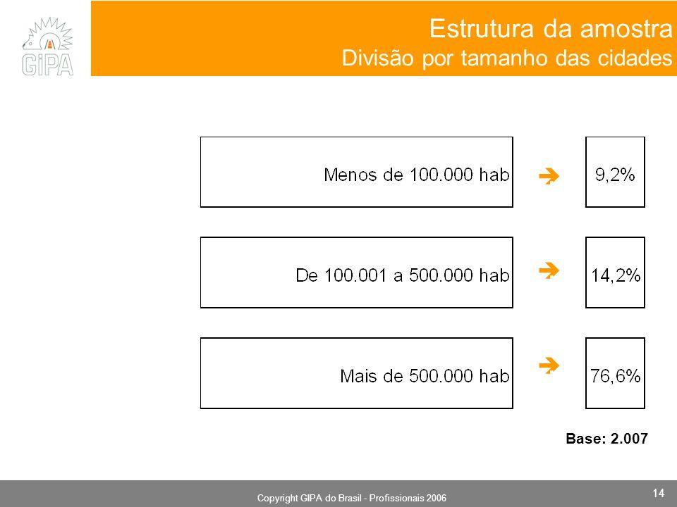 Monografia 2006 Copyright GIPA do Brasil - Profissionais 2006 14 Estrutura da amostra Divisão por tamanho das cidades. Base: 2.007
