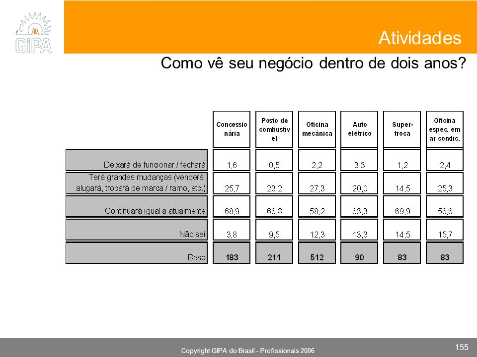 Monografia 2006 Copyright GIPA do Brasil - Profissionais 2006 155 Atividades Como vê seu negócio dentro de dois anos?